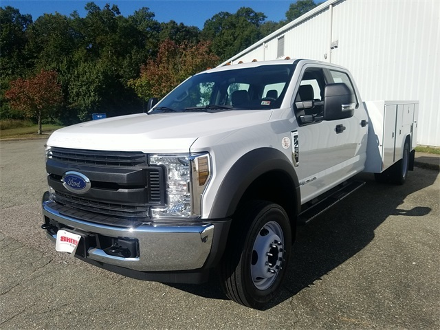 2019 F-450 Crew Cab DRW 4x2,  Reading SL Service Body #NF84956 - photo 4