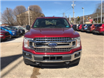 2018 F-150 SuperCrew Cab 4x4,  Pickup #B25217 - photo 3