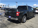 2018 F-150 SuperCrew Cab 4x2,  Pickup #180593 - photo 4