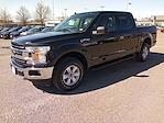 2019 Ford F-150 SuperCrew Cab 4x4, Pickup #GA19370A - photo 3