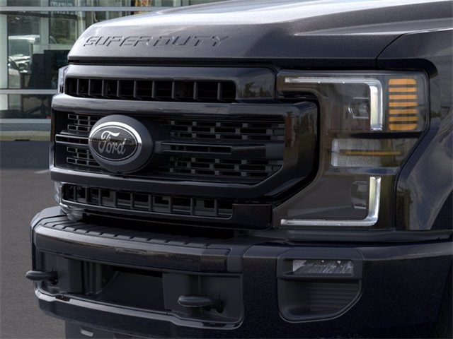 2020 Ford F-250 Crew Cab 4x4, Pickup #GE57823 - photo 17