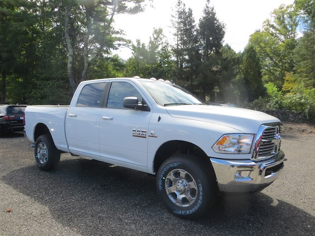 2018 Ram 2500 Crew Cab 4x4,  Pickup #350886 - photo 19