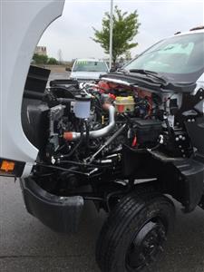 2019 Silverado Medium Duty Regular Cab 4x4,  Crysteel E-Tipper Dump Body #C193081 - photo 15