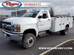 2020 Chevrolet Silverado 5500 Regular Cab DRW 4x4, Knapheide Steel Service Body #C203278 - photo 5