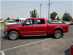 2018 F-150 SuperCrew Cab 4x4,  Pickup #1F80987 - photo 6