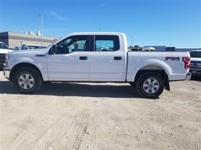 2019 F-150 SuperCrew Cab 4x4, Pickup #1F91370 - photo 6