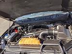2016 F-150 SuperCrew Cab 4x4,  Pickup #1FP7160 - photo 25