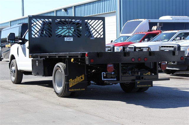 2019 F-350 Regular Cab DRW 4x2,  Cadet Platform Body #KEC52216 - photo 3