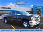 2018 Silverado 1500 Double Cab 4x2,  Pickup #J36648 - photo 1
