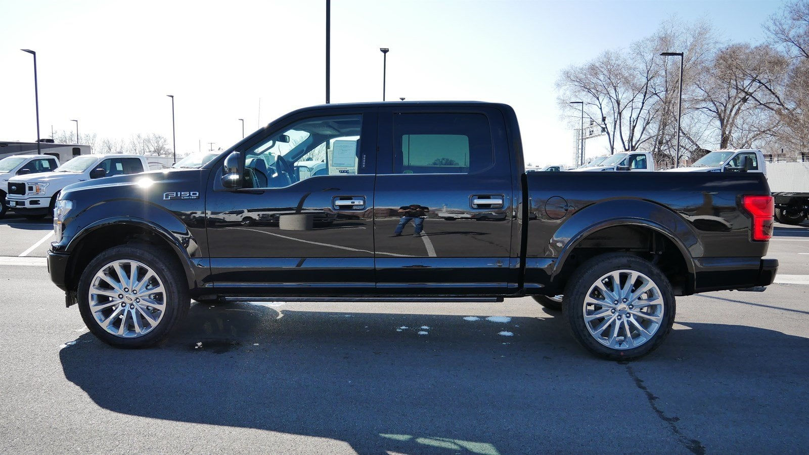 2019 F-150 SuperCrew Cab 4x4,  Pickup #70548 - photo 7