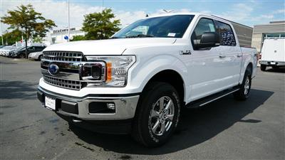 2019 F-150 SuperCrew Cab 4x4, Pickup #71010 - photo 8