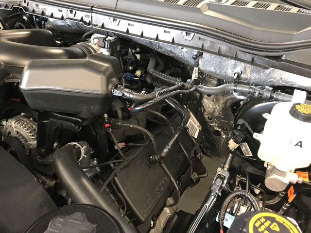 2017 F-250 Regular Cab, Pickup #W0664 - photo 25