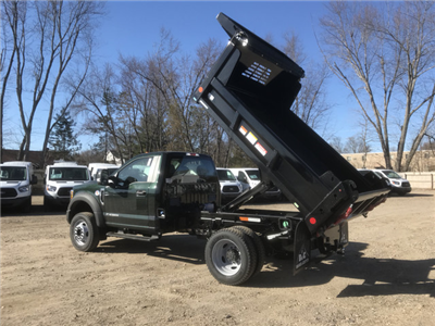 2018 F-550 Regular Cab DRW 4x4,  Reading Marauder Standard Duty Dump Body #X0392 - photo 5
