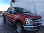 2018 F-250 Crew Cab 4x4,  Pickup #CEB57373 - photo 4