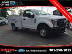 2019 F-250 Regular Cab 4x2,  Pickup #CED61430 - photo 3