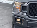 2019 Ford F-150 SuperCrew Cab 4x4, Pickup #CFA7656A - photo 16