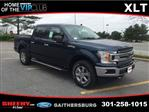 2019 F-150 SuperCrew Cab 4x4,  Pickup #CFB59576 - photo 5