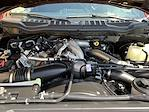 2020 Ford F-350 Crew Cab 4x4, Pickup #CFB6071A - photo 31