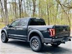 2019 F-150 SuperCrew Cab 4x4, Pickup #CFA3501A - photo 10