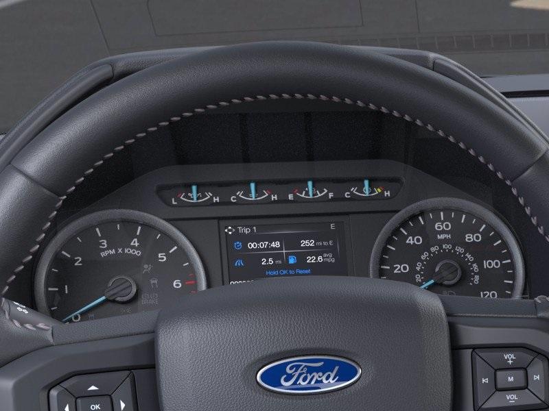 2020 Ford F-150 SuperCrew Cab 4x4, Pickup #CFC79428 - photo 13