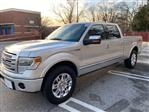 2014 F-150 SuperCrew Cab 4x4, Pickup #CNP890J - photo 8