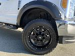 2017 Ford F-250 Crew Cab 4x4, Pickup #CEE1658B - photo 19