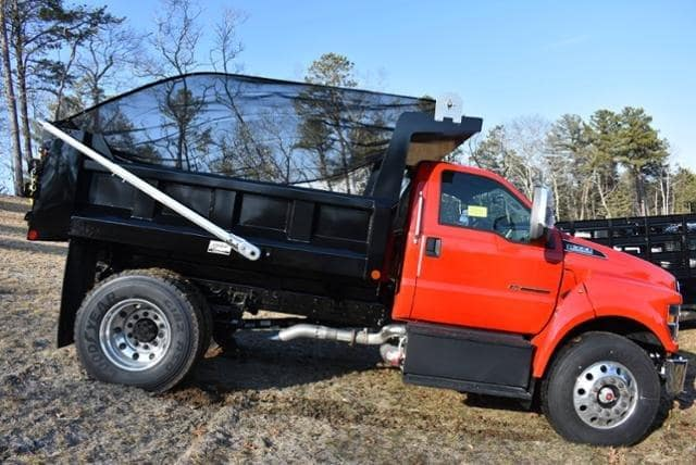2019 F-650 Regular Cab DRW 4x2,  Crysteel E-Tipper Dump Body #N8096 - photo 3