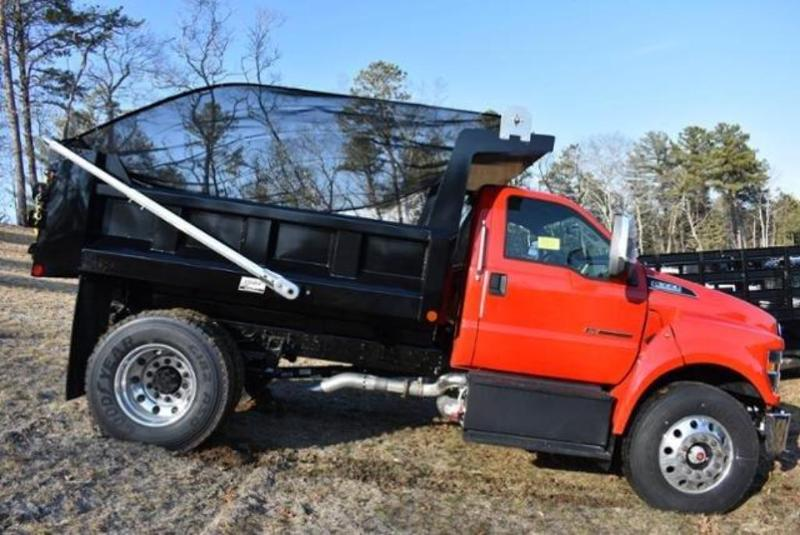 2019 F-650 Regular Cab DRW 4x2,  Crysteel E-Tipper Dump Body #N8096 - photo 17