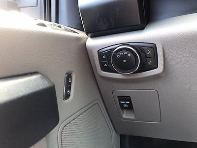 2019 Ford F-150 Regular Cab 4x2, Pickup #P7090 - photo 14