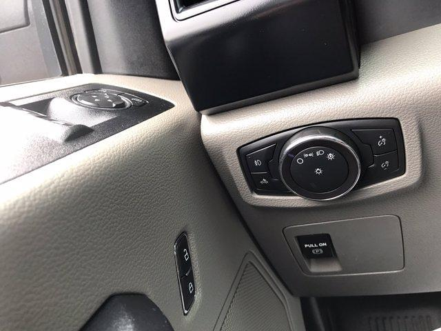 2019 Ford F-150 Regular Cab 4x2, Pickup #P7091 - photo 14