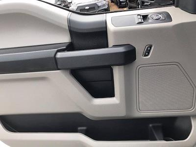 2019 Ford F-150 Regular Cab 4x2, Pickup #P7091 - photo 12