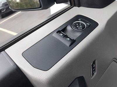 2019 Ford F-150 Regular Cab 4x2, Pickup #P7091 - photo 13