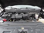 2017 Ford F-250 Crew Cab 4x4, Pickup #11031A - photo 29