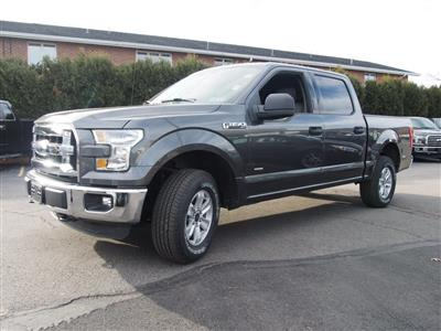 2016 F-150 SuperCrew Cab 4x4,  Pickup #P4706B - photo 6