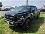 2018 F-150 SuperCrew Cab 4x4,  Pickup #12466 - photo 3