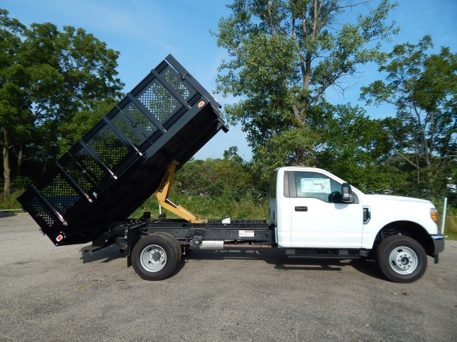 2017 F-350 Regular Cab DRW 4x4,  Landscape Dump #FT11719 - photo 18