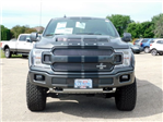 2018 F-150 SuperCrew Cab 4x4,  Pickup #FT12119 - photo 10