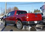 2019 F-150 SuperCrew Cab 4x4, Pickup #61692 - photo 5