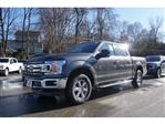 2019 F-150 SuperCrew Cab 4x4, Pickup #61722 - photo 4