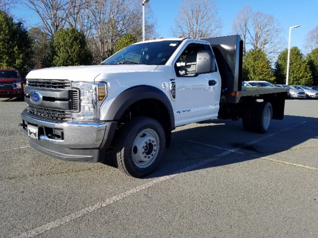 2019 F-450 Regular Cab DRW 4x4,  Double A Platform Body #T198066 - photo 1