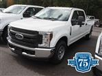 2019 F-250 Crew Cab 4x2,  Pickup #19T0179 - photo 1