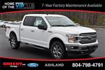 2019 F-150 SuperCrew Cab 4x4,  Pickup #JA08802 - photo 3