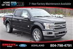 2019 F-150 SuperCrew Cab 4x4, Pickup #JFA54736 - photo 3