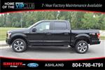 2019 F-150 SuperCrew Cab 4x4, Pickup #JC80085 - photo 6