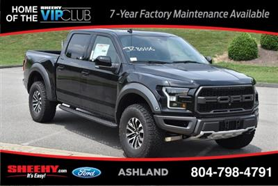 2019 F-150 SuperCrew Cab 4x4,  Pickup #JC80106 - photo 3
