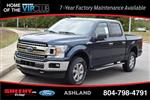 2019 F-150 SuperCrew Cab 4x4,  Pickup #JD50722 - photo 1