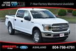 2019 F-150 SuperCrew Cab 4x4,  Pickup #JE23972 - photo 3