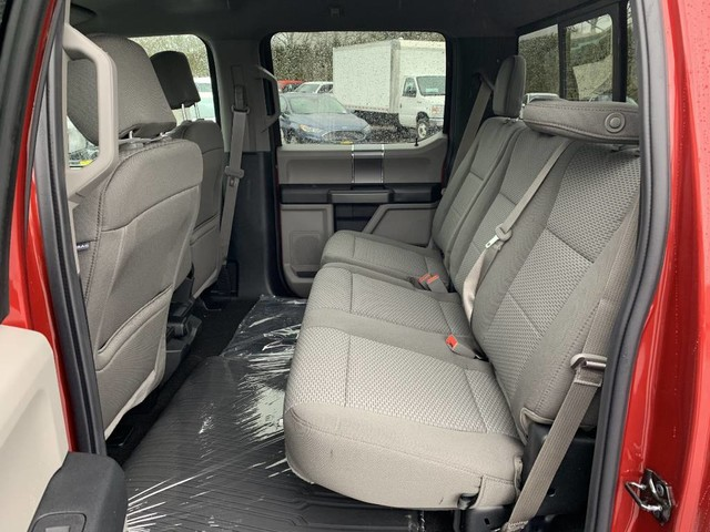 2019 F-150 SuperCrew Cab 4x4,  Pickup #F36014 - photo 19