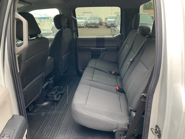 2019 F-150 SuperCrew Cab 4x4,  Pickup #F36350 - photo 17
