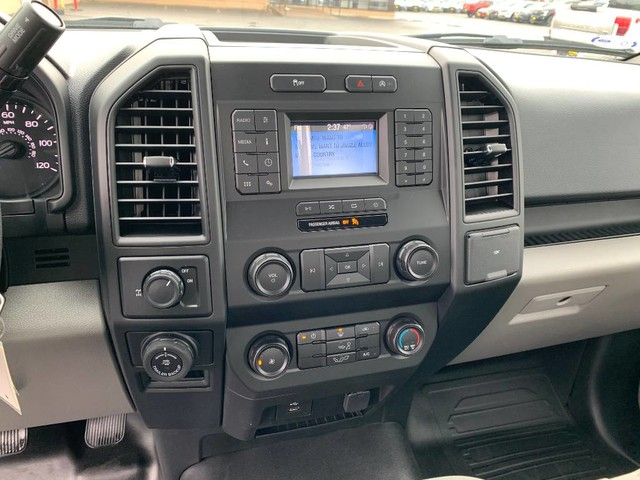 2019 F-150 Regular Cab 4x2, Pickup #F36894 - photo 12